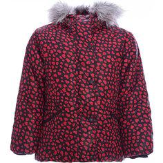 Куртка Wojcik для девочки