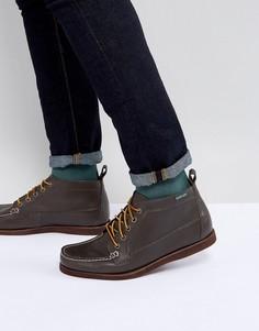 Темно-коричневые кожаные ботинки Eastland Seneca - Коричневый
