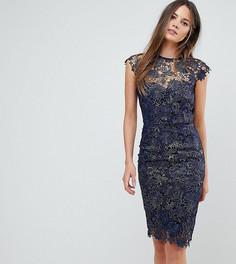 Кружевное платье-футляр с отделкой металлик и глубоким вырезом на спине Paper Dolls Tall - Темно-синий