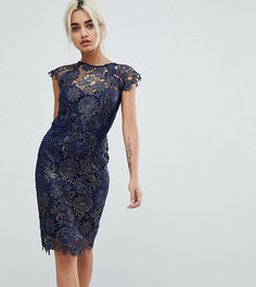 Кружевное платье-футляр с отделкой металлик и глубоким вырезом на спине Paper Dolls Petite - Темно-синий
