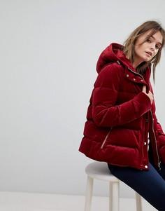 Дутая куртка с капюшоном Tommy Hilfiger - Красный