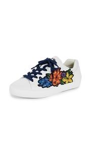 Ash Neo Sneakers
