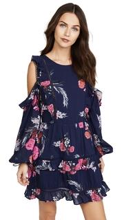 Steele Bontanica Dress