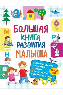 Большая книга развития малыша Росмэн