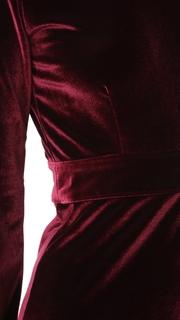 CLAYTON Velour Rowan Dress