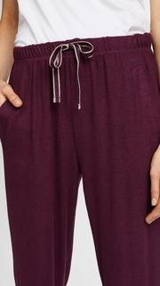 Splendid Hacci Pants