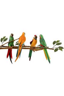 Попугай Hansa