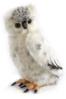Полярная сова Hansa