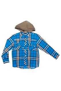 Рубашка Vitacci