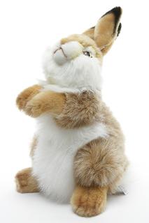 Кролик Hansa