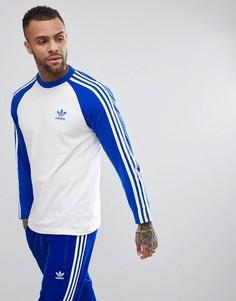 Синий лонгслив adidas Originals adicolor CW1229 - Синий