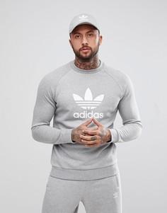 Серый свитшот с логотипом-трилистником adidas Originals adicolor CY4573 - Серый