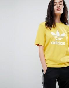 Желтая oversize-футболка с логотипом adidas Originals adicolor - Желтый