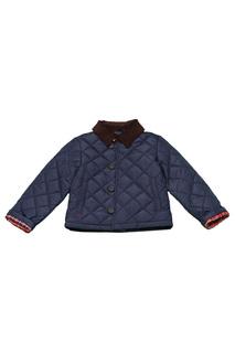 Куртка CHAPS