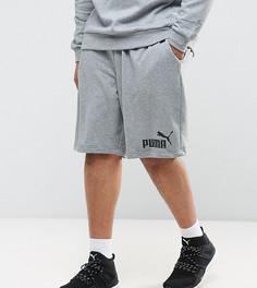 Серые трикотажные шорты Puma PLUS ESS No.1 83826103 - Серый