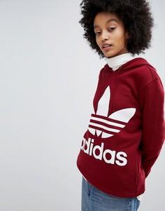 Худи бордового цвета с логотипом-трилистником adidas Originals - Красный