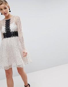 Приталенное платье мини с длинными рукавами и кружевными вставками ASOS - Мульти