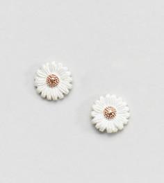 Серебряные серьги-гвоздики в форме цветка Olivia Burton - Золотой