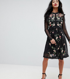Короткое приталенное премиум-платье из тюля с цветочной вышивкой и отделкой металлик Frock And Frill Petite - Черный