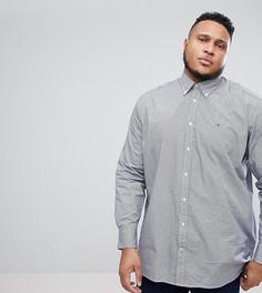 Рубашка классического кроя с принтом и логотипом Tommy Hilfiger PLUS - Синий