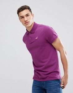 Поло фиолетового цвета из эластичного пике с логотипом Hollister - Фиолетовый