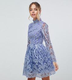 Платье мини с кружевной вставкой сзади Chi Chi London Petite - Фиолетовый