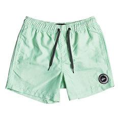 Шорты пляжные детские Quiksilver Everydayvlyth13 Green Ash