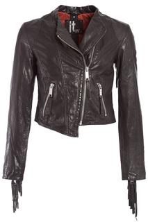 jacket MAZE