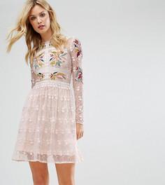 Короткое приталенное премиум-платье для выпускного с вышивкой Frock And Frill Tall - Мульти