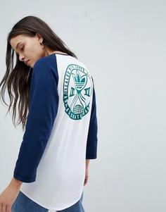 Свободная футболка с рукавами реглан adidas Skateboarding - Мульти