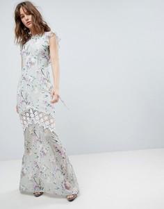 Платье макси со вставкой кроше, принтом, открытой спиной и оборками Hope & Ivy - Мульти