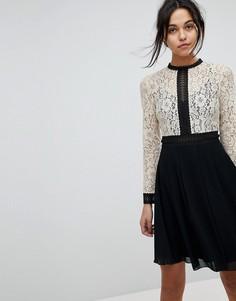 Платье с кружевным верхом и расклешенной юбкой Little Mistress - Мульти
