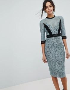 Кружевное платье-футляр миди с контрастными вставками Little Mistress - Синий