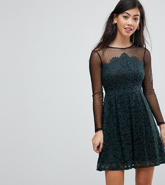 Короткое приталенное платье из кружева и сетки ASOS PETITE - Мульти