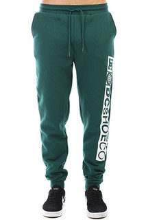 Штаны спортивные DC Havelock Pant June Bug