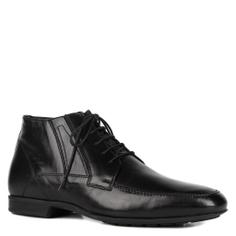 Ботинки NERO GIARDINI A403151U черный