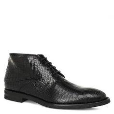 Ботинки DINO BIGIONI DB15400 черный