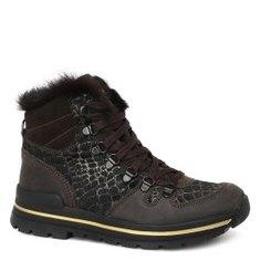 Ботинки OLANG GINGER темно-коричневый