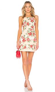 Платье arcadia - Finders Keepers