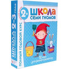 """Набор развивающих книг """"Полный годовой курс:2-3 года"""" Мозаика Синтез"""