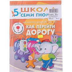 """Шестой год обучения """"Как перейти дорогу"""", Школа Семи Гномов Мозаика Синтез"""