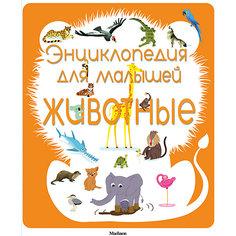 Энциклопедия для малышей. Животные Махаон