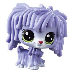 Фигурка Littlest Pet Shop, Собака Комондор Hasbro