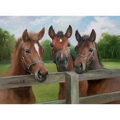 Пазл «Три лошади» 500 деталей, Ravensburger