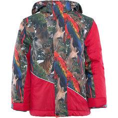 Куртка Huppa Alex
