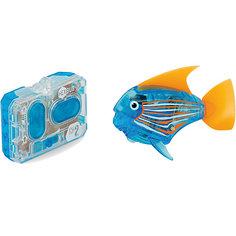 """Микро-робот """"Aqua Bot"""", синий, Hexbug"""