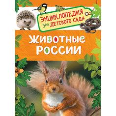 Животные России. Энциклопедия для детского сада Росмэн