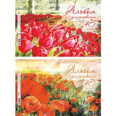 """Альбом для рисования """"Красная поляна"""", А4, 40 л. Erich Krause"""