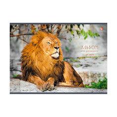 """Альбом для рисования """"Царственный лев"""", 40л Канц Эксмо"""