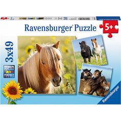 Пазл «Пони» 3х49шт Ravensburger